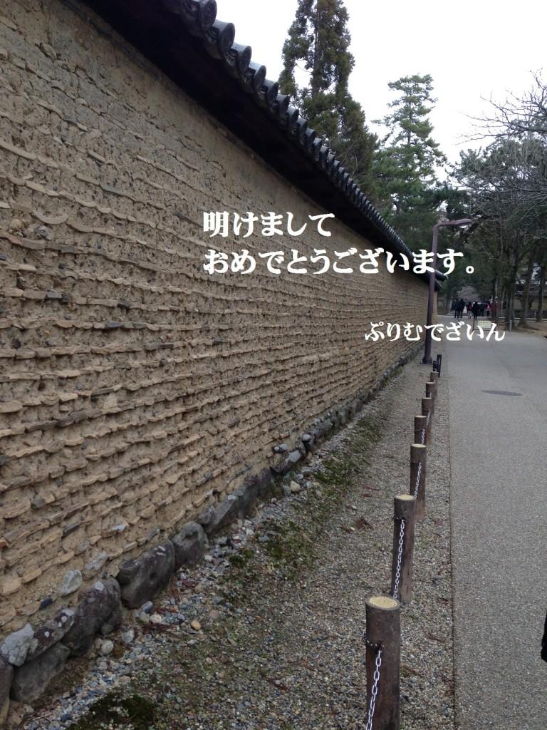 IMG_3044S